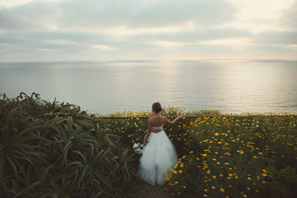 Martin Johnson House Wedding Picture overlooking Scripps Pier.